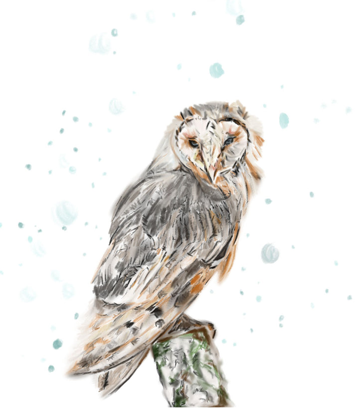 Owl in the Snow Print