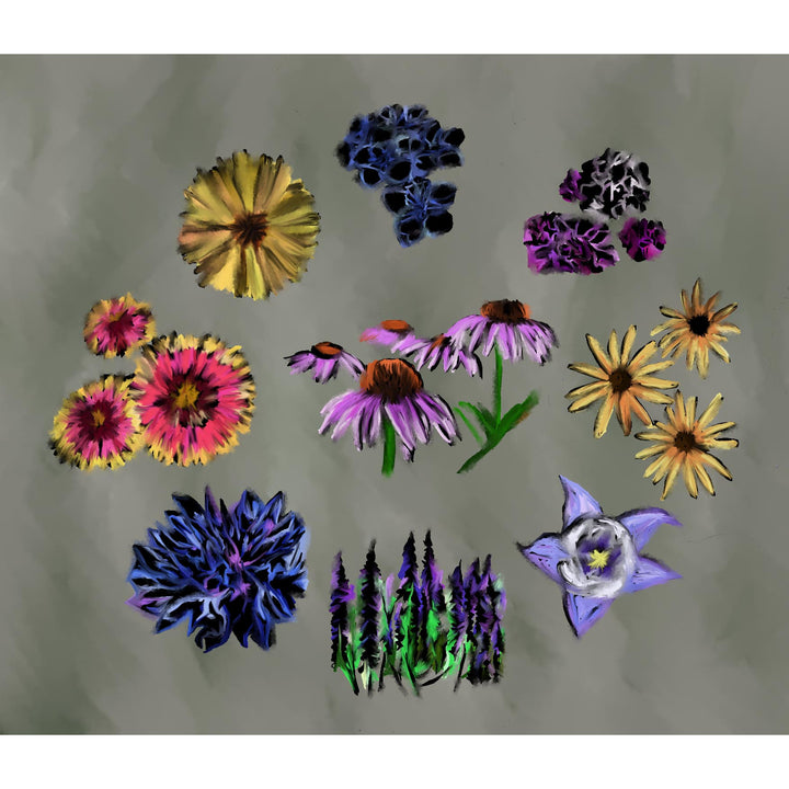 North American Wildflowers Print
