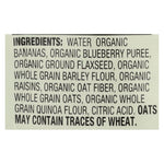 Organic Stage 2 Blueberry Banana Flax & Oat Wholesome Breakfast Pouch 4 Oz - 12 pack