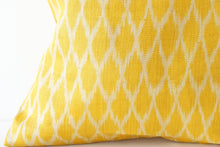 Load image into Gallery viewer, Ochre Ikat No. 1 Cushions