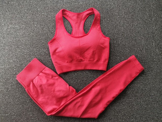 Red Seamless Fitness Set