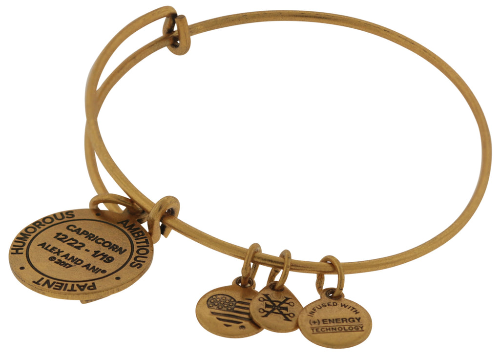 Alex and Ani Capricorn Charm Bangle - Rafaelian Gold -
