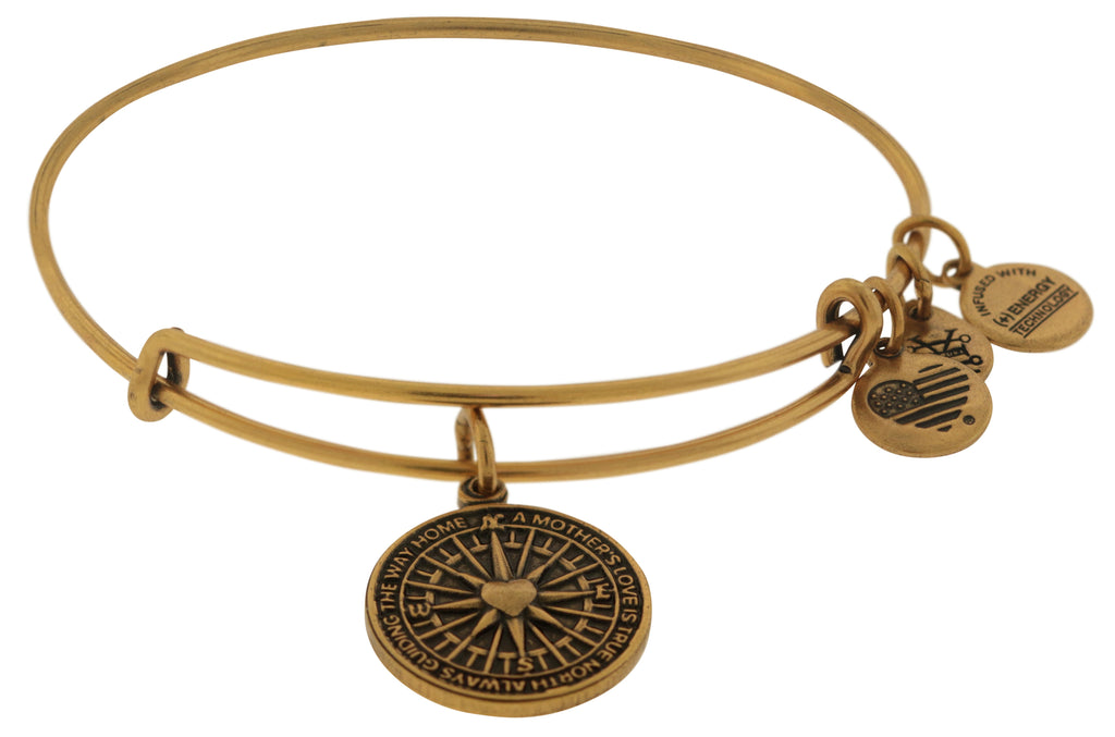 Alex and Ani True Direction Charm Bangle Bracelet - Rafaelian Gold -
