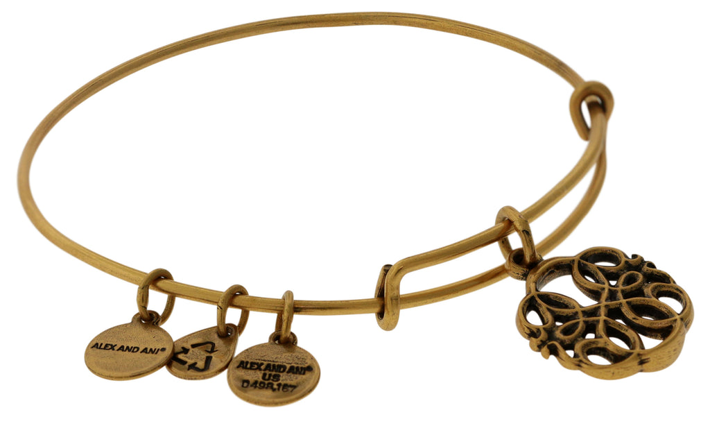 Alex And Ani Path Of Symbols Path Of Life Bangle -
