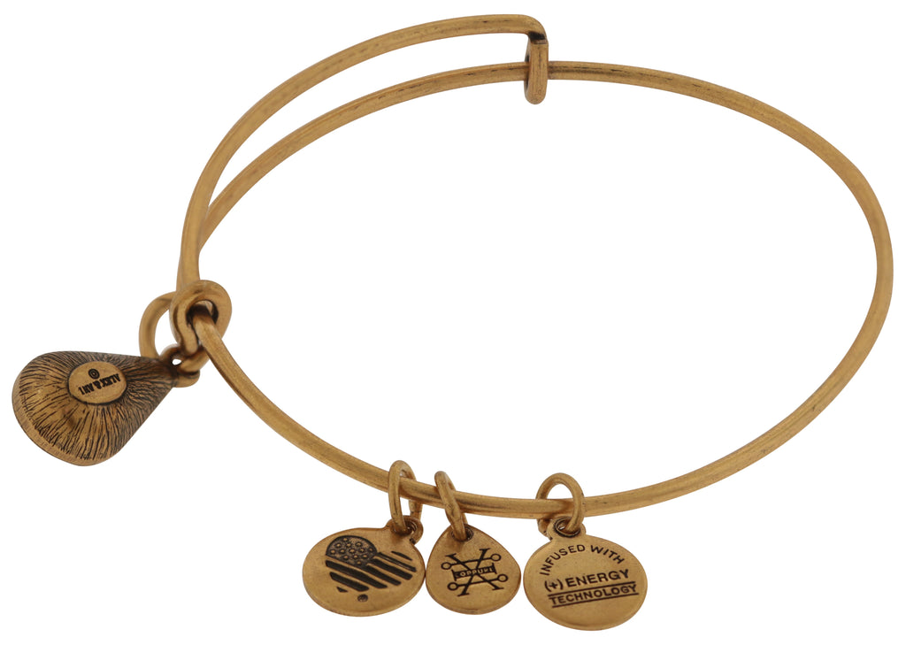 Alex and Ani January Drop Charm Bangle Bracelet - Rafaelian Gold -