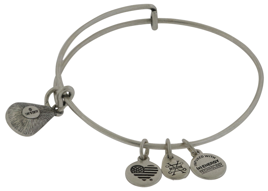 Alex and Ani January Drop Charm Bangle Bracelet - Rafaelian Silver -
