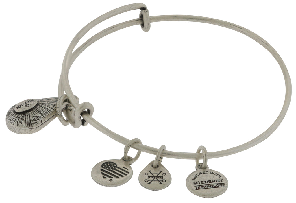 Alex and Ani February Drop Charm Bangle Bracelet - Rafaelian Silver -