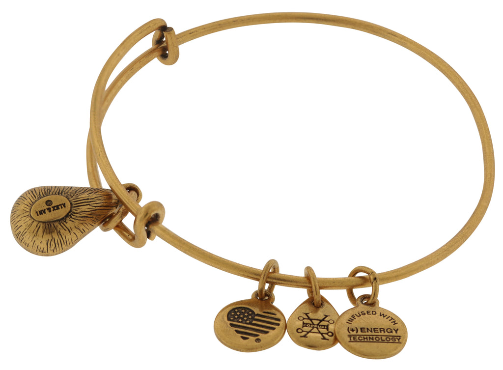 Alex and Ani March Drop Charm Bangle Bracelet - Rafaelian Gold -