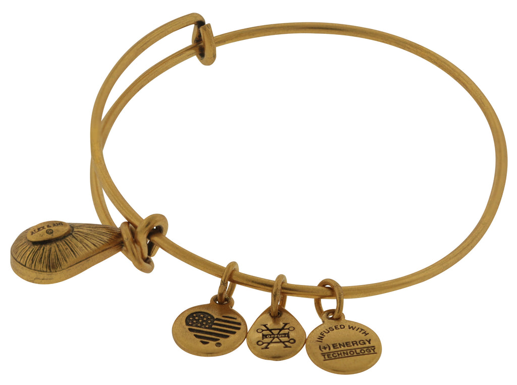 Alex and Ani April Drop Charm Bangle Bracelet - Rafaelian Gold -
