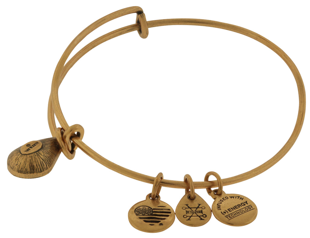 Alex and Ani May Drop Charm Bangle Bracelet - Rafaelian Gold -