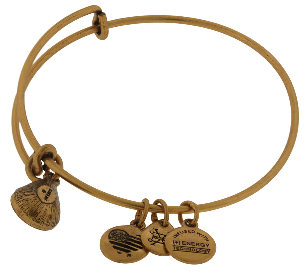 Alex and Ani August Drop Charm Bangle Bracelet - Rafaelian Gold -