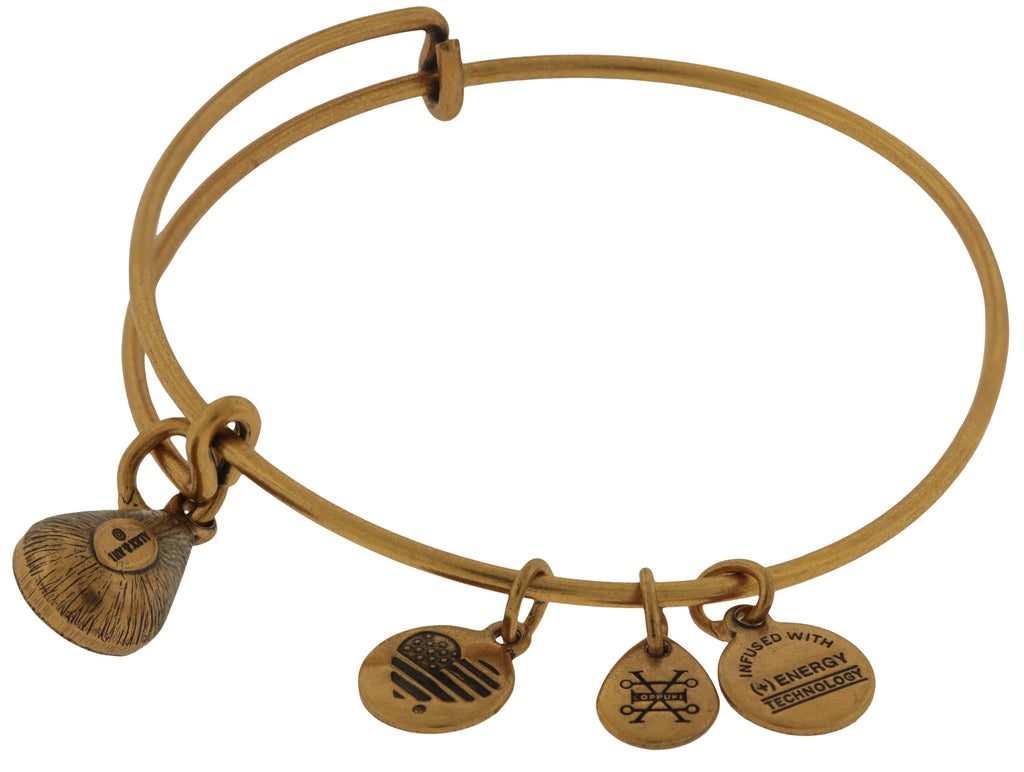 Alex and Ani September Drop Charm Bangle Bracelet - Rafaelian Gold -