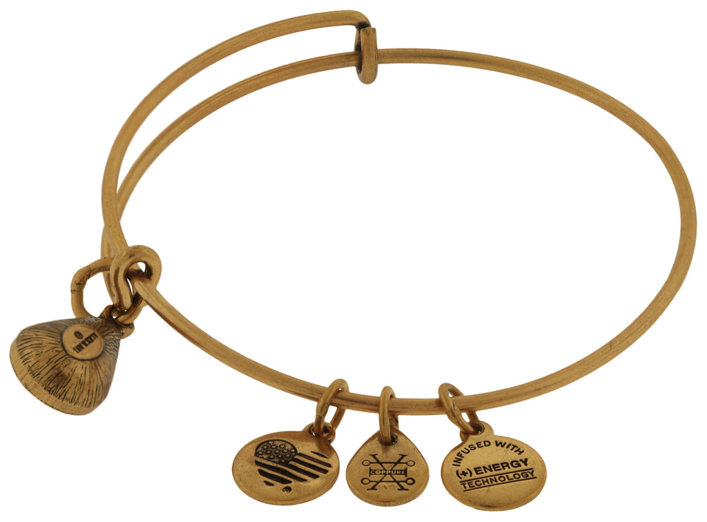 Alex and Ani November Drop Charm Bangle Bracelet - Rafaelian Gold -