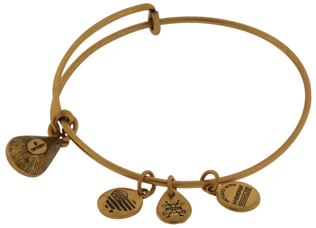 Alex and Ani December Drop Charm Bangle Bracelet - Rafaelian Gold -