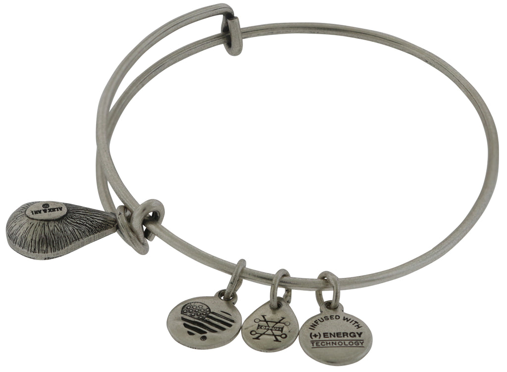 Alex and Ani December Drop Charm Bangle Bracelet - Rafaelian Silver -