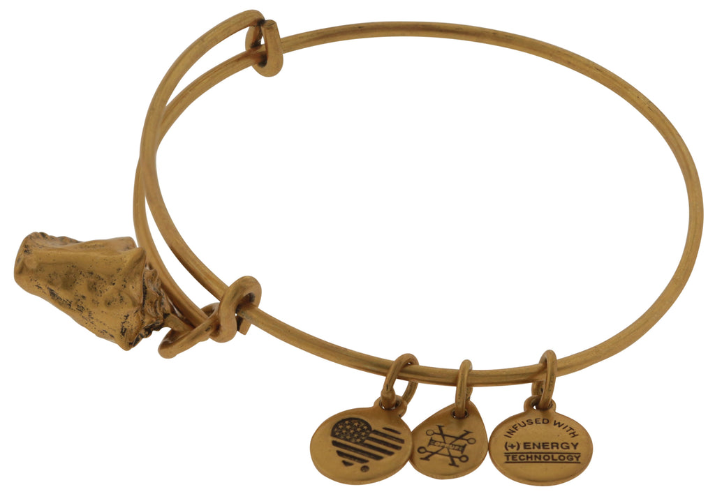 Alex and Ani Conch Shell Bangle Bracelet - Rafaelian Gold -