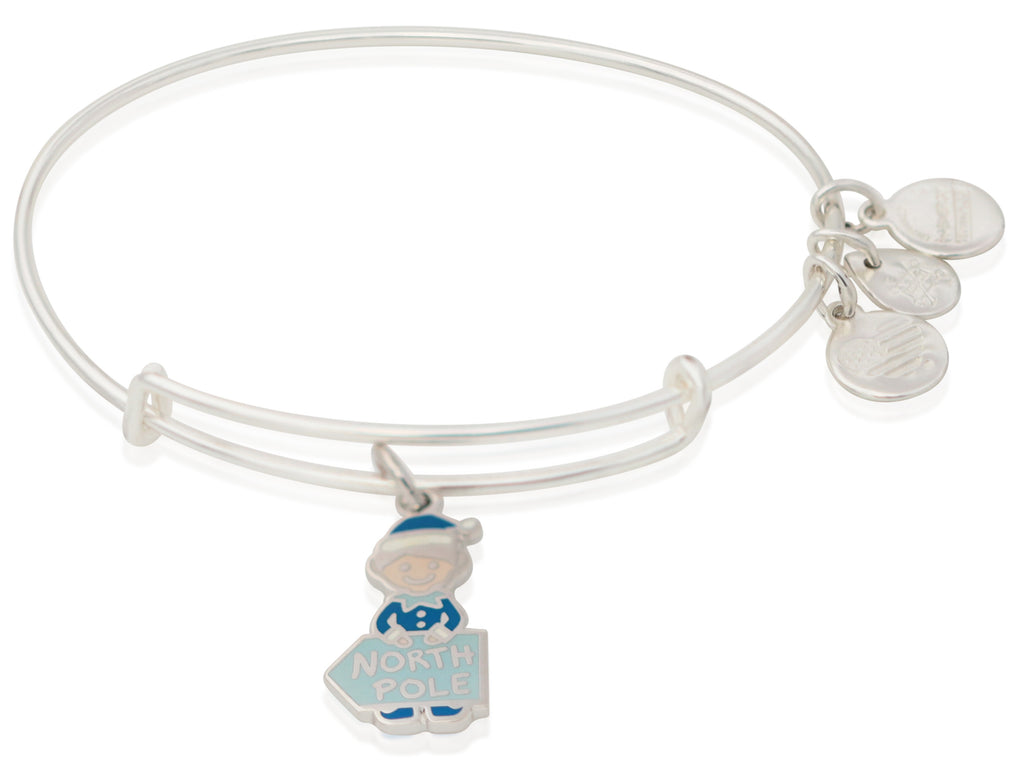 Alex And Ani Elf Charm Bangle -