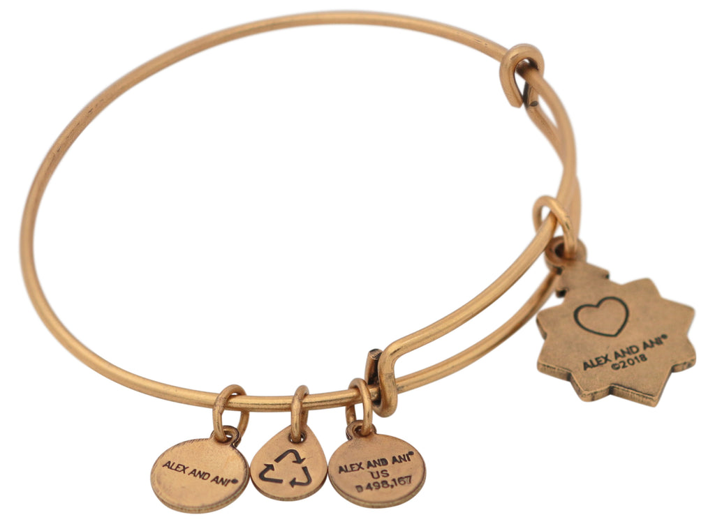 Alex and Ani Friend Charm Bangle Bracelet 2018 - Rafaelian Gold -