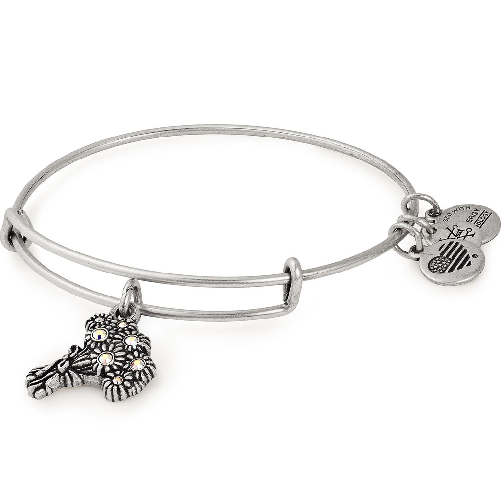 Alex And Ani Words Are Powerful I Pick You Silver Charm Bangle -