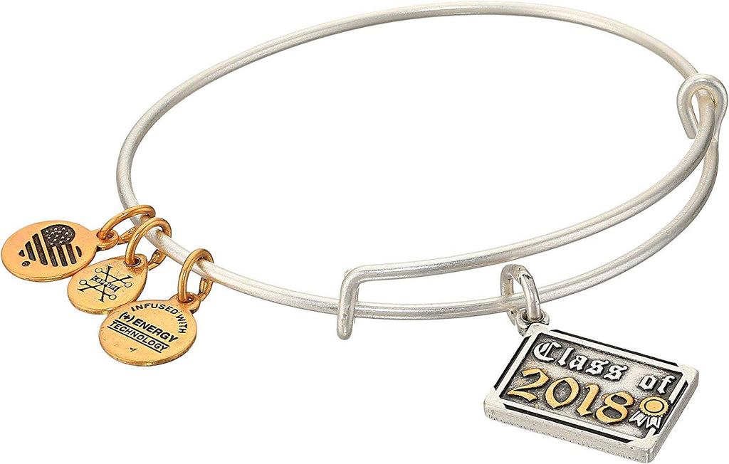 Alex And Ani Class Of 2018 Silver Charm Bangle -