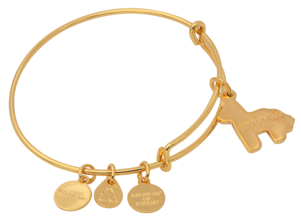 Alex And Ani Pinata Charm Bangle -