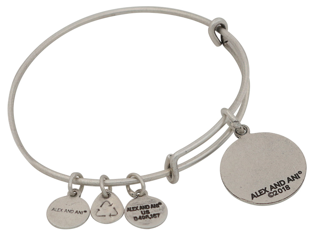 Alex and Ani Color Infusion - Anchor Charm Bangle Bracelet - Rafaelian Silver - Expandable  -