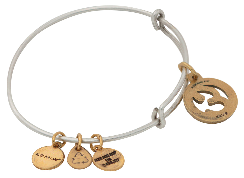 Alex and Ani Initial E Two-Tone Charm Bangle Bracelet - Rafaelian Gold and Silver Finish -