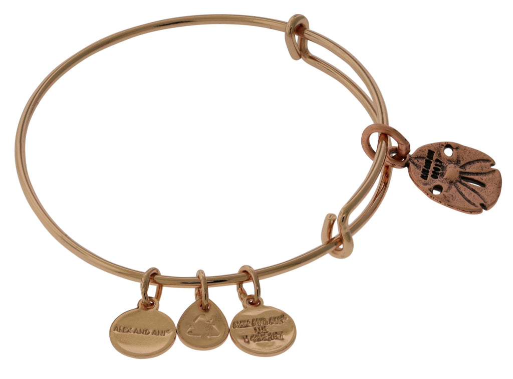 Alex And Ani Sand Dollar III ROG (Charm) - SR (EWB)