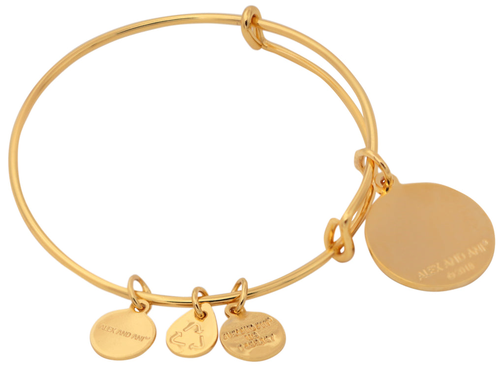 Alex and Ani Words are Powerful - Adventure Awaits Bracelet - Shiny Gold - Expandable -