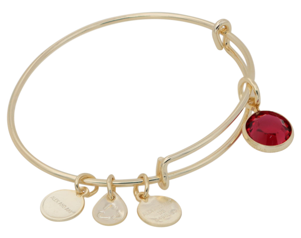 Alex and Ani January Charm Bangle Bracelet