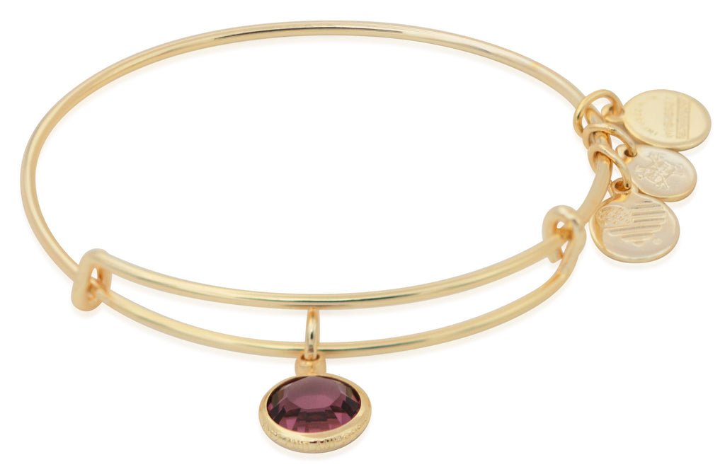 Alex And Ani February Birthstone Charm Bangle