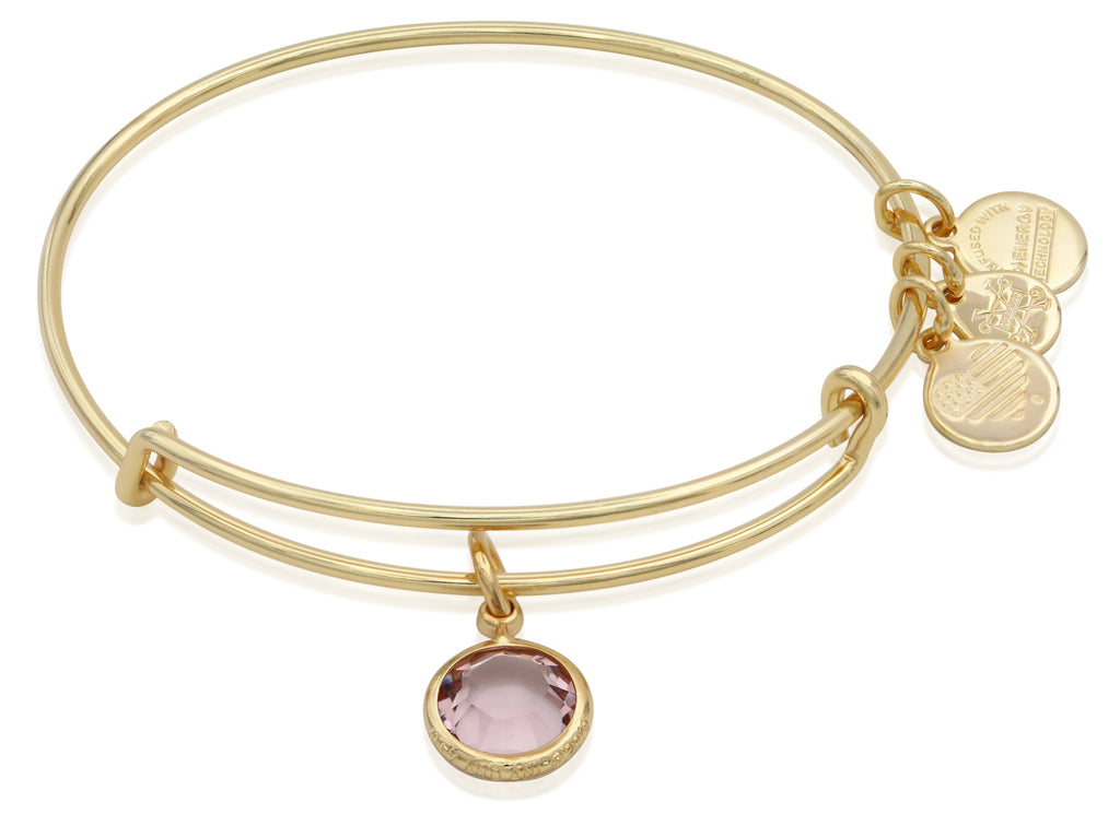 Alex and Ani June Color Code Amethyst Bangle Bracelet Shiny Gold NWTBC
