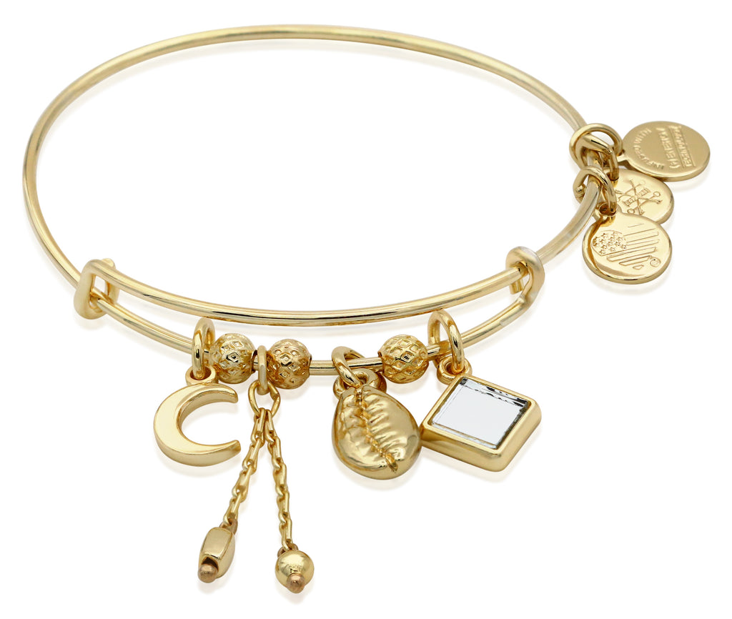 Alex And Ani Puka Shell Cluster Bangle Bracelet -