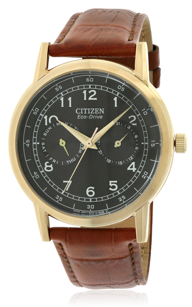 Citizen Eco-Drive Gold-Tone Leather Mens Watch