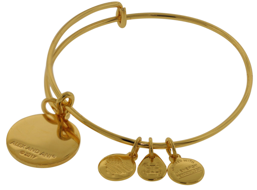 Alex and Ani U.S. Air Force Charm Bangle - Shiny Gold -