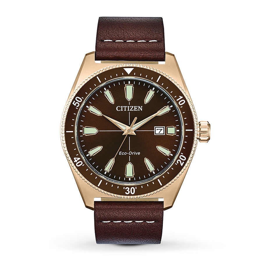 Citizen Eco-Drive Brycen Vintage Mens Watch