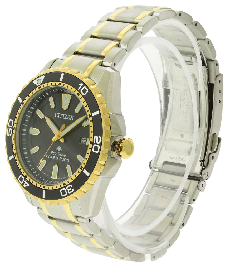 Citizen Eco-Drive Promaster Professional Diver Mens Watch