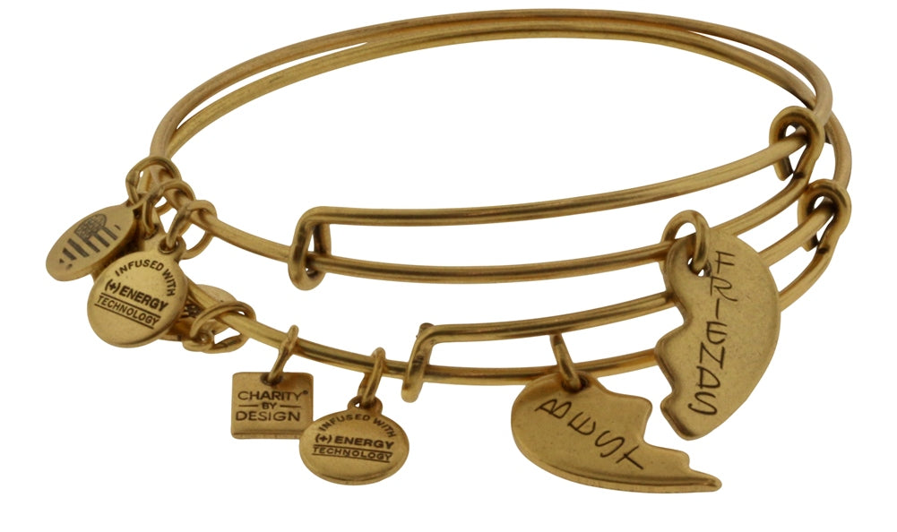 Alex and Ani Best Friends Set of 2 Charm Bangle Bracelets -