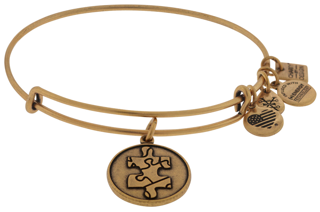 Alex and Ani Piece of the Puzzle Charm Bangle Bracelet - Rafaelian Gold -