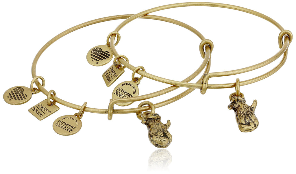 Alex And Ani Side By Side Charm Rafaelian Gold Finish Bangles -