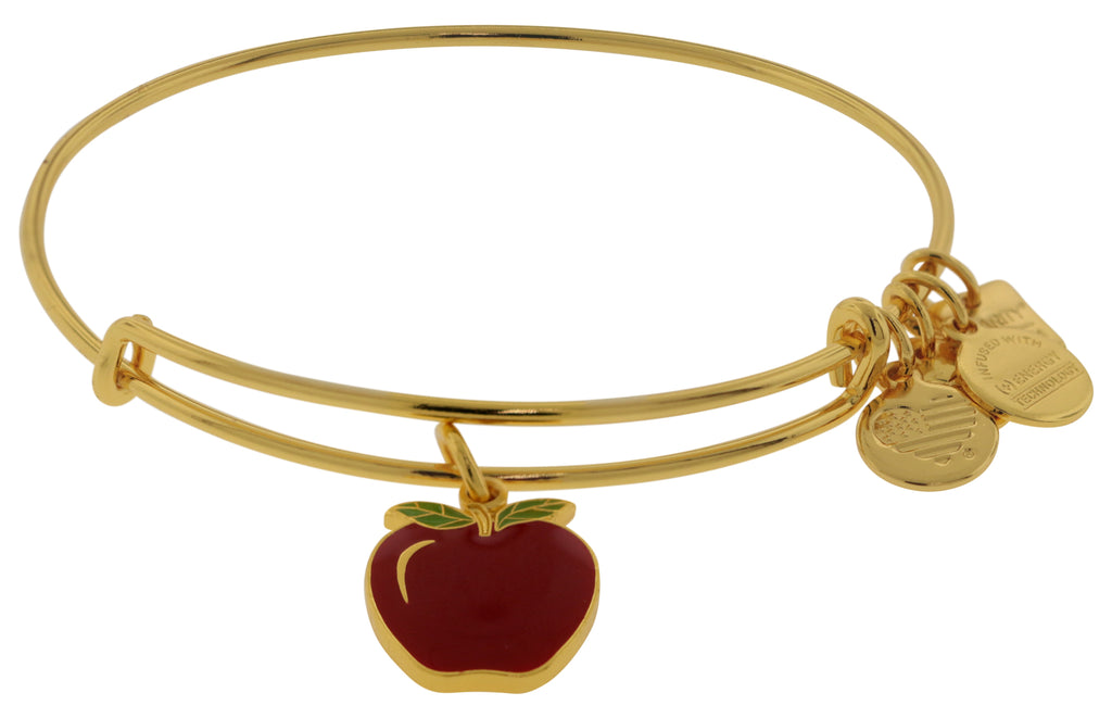Alex and Ani Charity By Design Apple EWB Bangle Bracelet  -