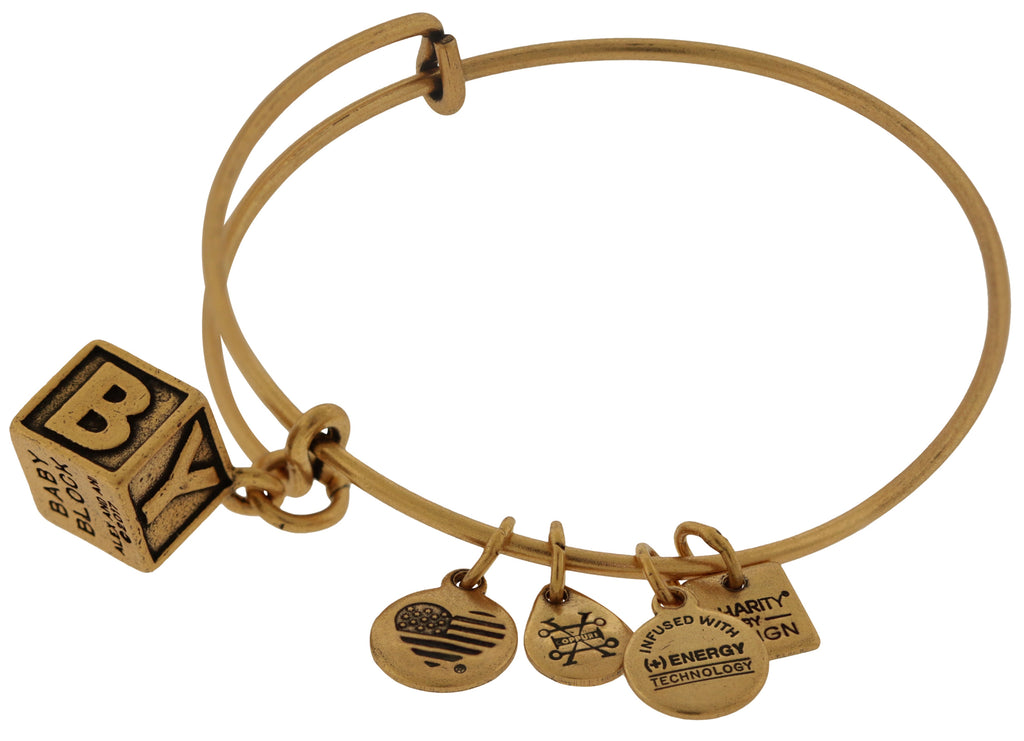 Alex and Ani Baby Block Charm Bangle Bracelet - Rafaelian Gold -