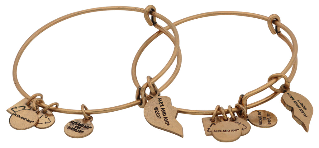 Alex And Ani Charity By Design - Best Friends Set of 2 - RG -