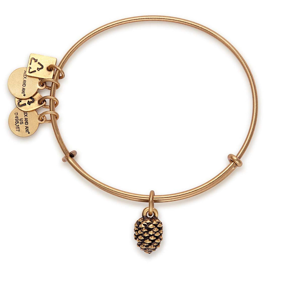 Alex And Ani Pinecone Charm Bangle -