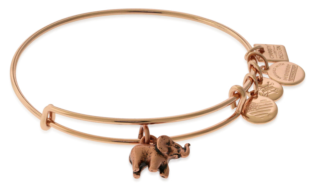 Alex And Ani Charity By Design - Elephant II ROG (Charm) - SR (EWB)