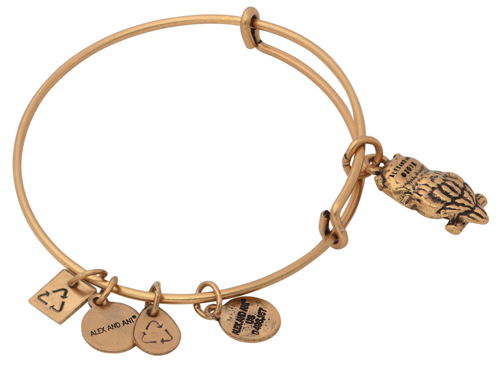 Alex and Ani Charity By Design - Owl II Charm Bangle Bracelet - Rafaelian Gold - Expandable  -