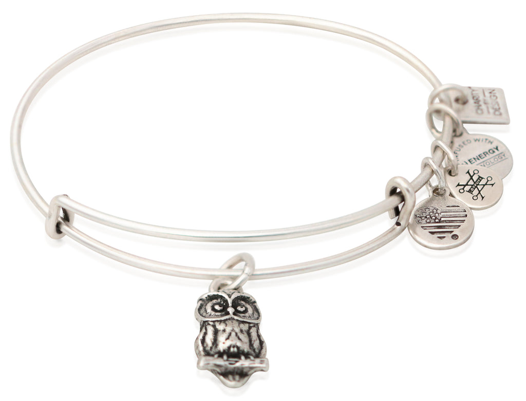 Alex and Ani Charity By Design - Owl Charm Bangle Bracelet - Rafaelian Silver - Expandable  -
