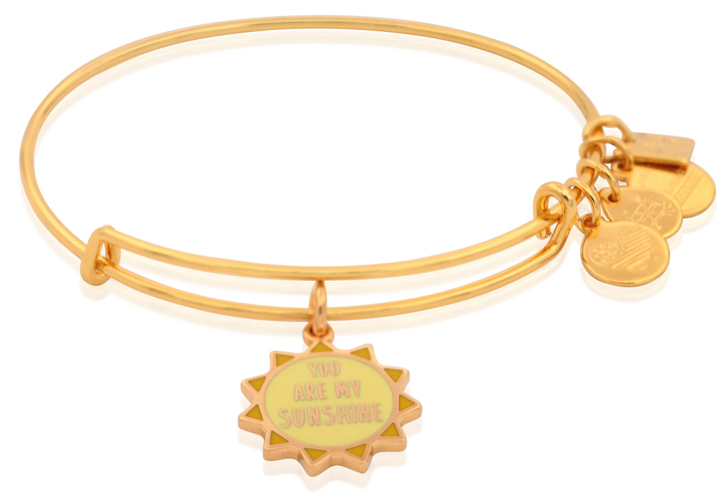 Alex and Ani Charity By Design - You Are My Sunshine Charm Bangle Bracelet - Shiny Gold - Expandable -