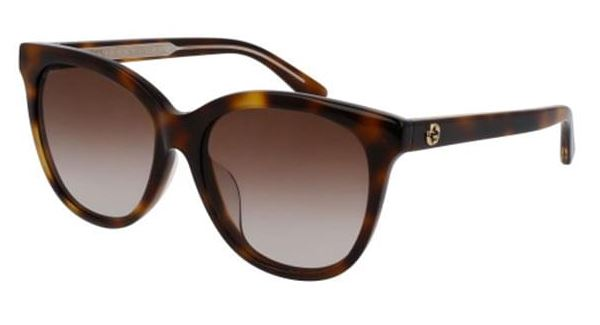 Gucci Havana Cat Eye Ladies Sunglasses -