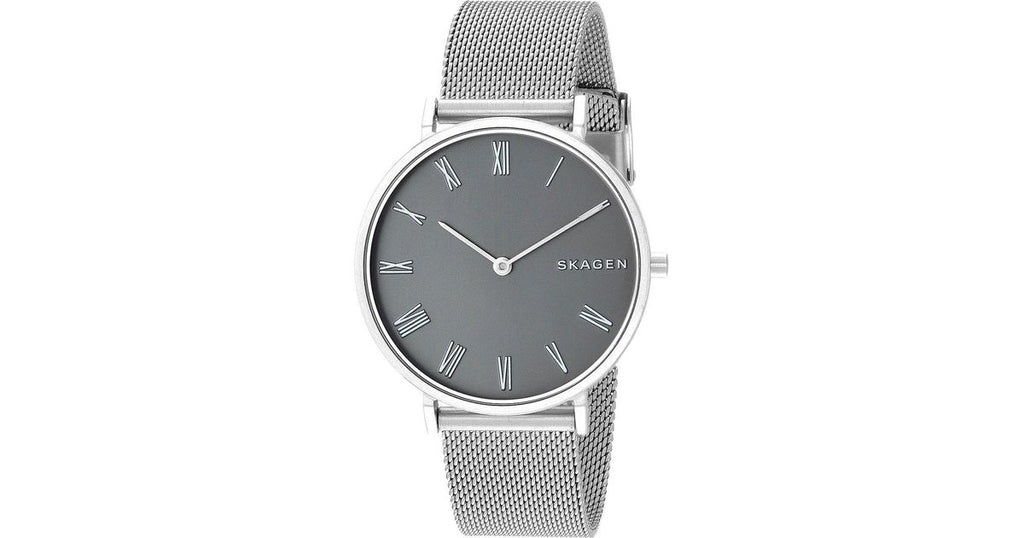 Skagen Hald Stainless Steel Mesh Ladies Watch